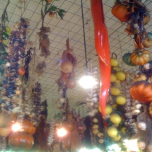 Emile's Fruit Shop, their Mum strung these!