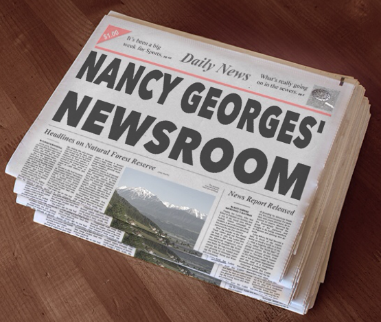 Nancy Georges Newsroom